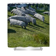 Ste Flavie 002 Shower Curtain