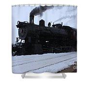 Steam Shower Curtain