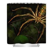 Steampunk - Spider - Arachnia Automata Shower Curtain
