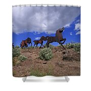 Steel Horses Shower Curtain