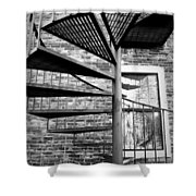 Steel Spiral Shower Curtain