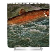 Steelhead Trout Fish No.143 Shower Curtain
