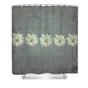Steely Gray Rustic Flower Row Shower Curtain
