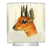Steenbok Shower Curtain