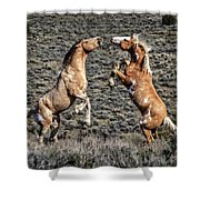 Steens Drama Shower Curtain