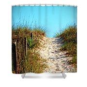 Steep Beach Path Shower Curtain