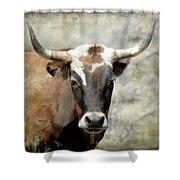 Steer Bull Shower Curtain