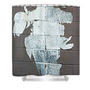 Steer Skull Abstract Shower Curtain
