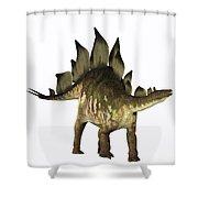 Stegosaurus Profile Shower Curtain