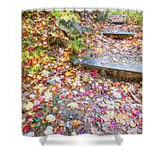 Step Into Fall Shower Curtain