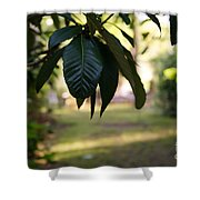 Step Into The Garden Shower Curtain