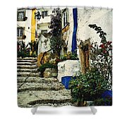 Step Street In Obidos Shower Curtain