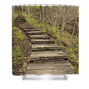 Step Trail In Woods 17 B Shower Curtain