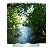 Stephens State Park Shower Curtain