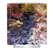 Stepping Stones At Autumn Forest Shower Curtain