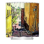 Steps At 187 Street Shower Curtain