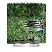 Steps In The Grass Shower Curtain