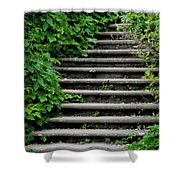 Steps With Ivy Shower Curtain