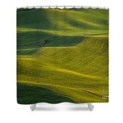 Steptoe Butte 11 Shower Curtain