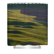 Steptoe Butte 12 Shower Curtain