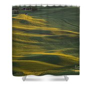 Steptoe Butte 14 Shower Curtain