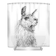 Steve Shower Curtain