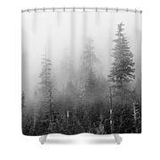Stevens Pass Trees And Fog 3201 Shower Curtain