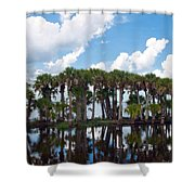 Stick Marsh In Fellsmere Florida Shower Curtain