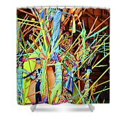 Stick Of Color Shower Curtain
