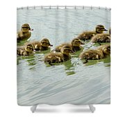 Stick Together Guys Shower Curtain
