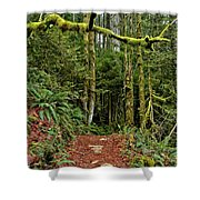 Sticking Out In The Rain Forest Shower Curtain