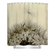 Sticking Out Shower Curtain
