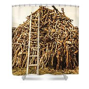 Sticks And Ladders Shower Curtain
