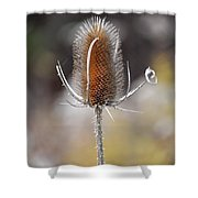 Sticky Situation Shower Curtain