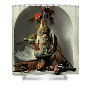 Stil Life With Birds And Hunting Gear In A Niche  Shower Curtain
