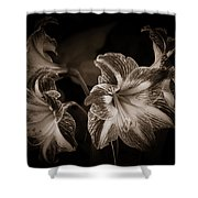 Still. Life. Colorless. Flowers. Shower Curtain