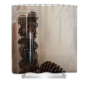 Still Life Of A Glass Jar Of Pine Cones Shower Curtain