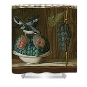 Still Life Of Grapes With A Gray Shrike Shower Curtain