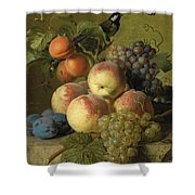 Still Life Of Peaches  Grapes And Plums On A Stone Ledge With A Bird And Butterfly Shower Curtain
