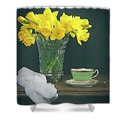 Still Life On Rustic Table Shower Curtain