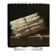 Still Life With Asparagus Shower Curtain