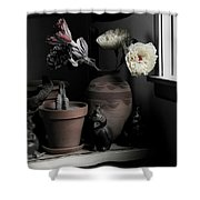 Still Life With Cactus Shower Curtain