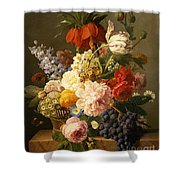 Still Life With Flowers And Fruit Shower Curtain by Jan Frans van Dael