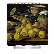 Still Life With Lemons And A Pot Of Honey Shower Curtain