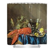 Still Life With Lobster 1655 Shower Curtain