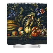 Still Life With Melons Apples Cherries Figs And Grapes On A Stone Ledge Shower Curtain