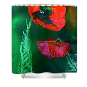 Still Life With Poppies. Shower Curtain