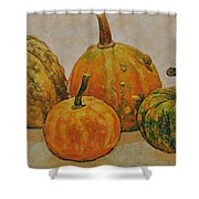 Still Life With Pumpkins Shower Curtain