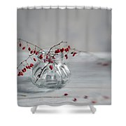 Still Life With Red Berries Shower Curtain