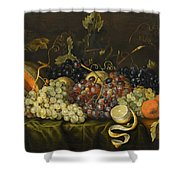 Still Life With Red Black And Green Grapes Shower Curtain
